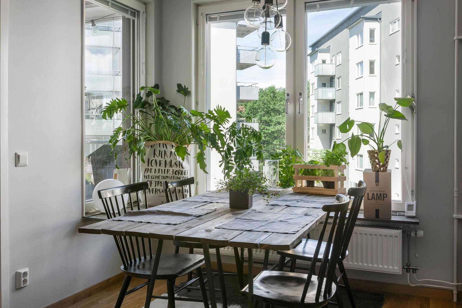 обеденный стол цветы окно подоконник