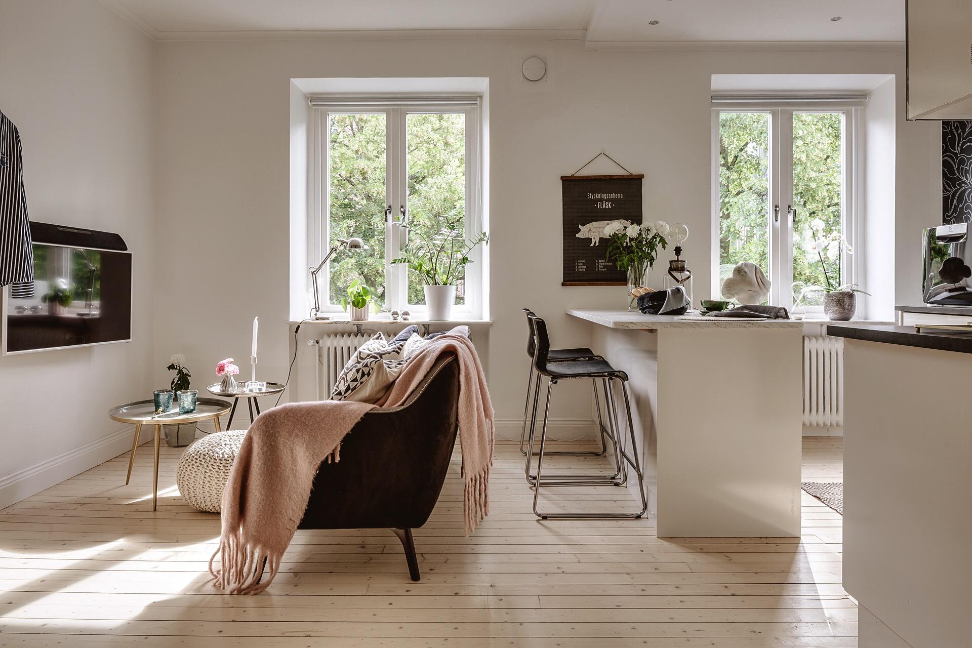 гостиная кухня стол стулья диван