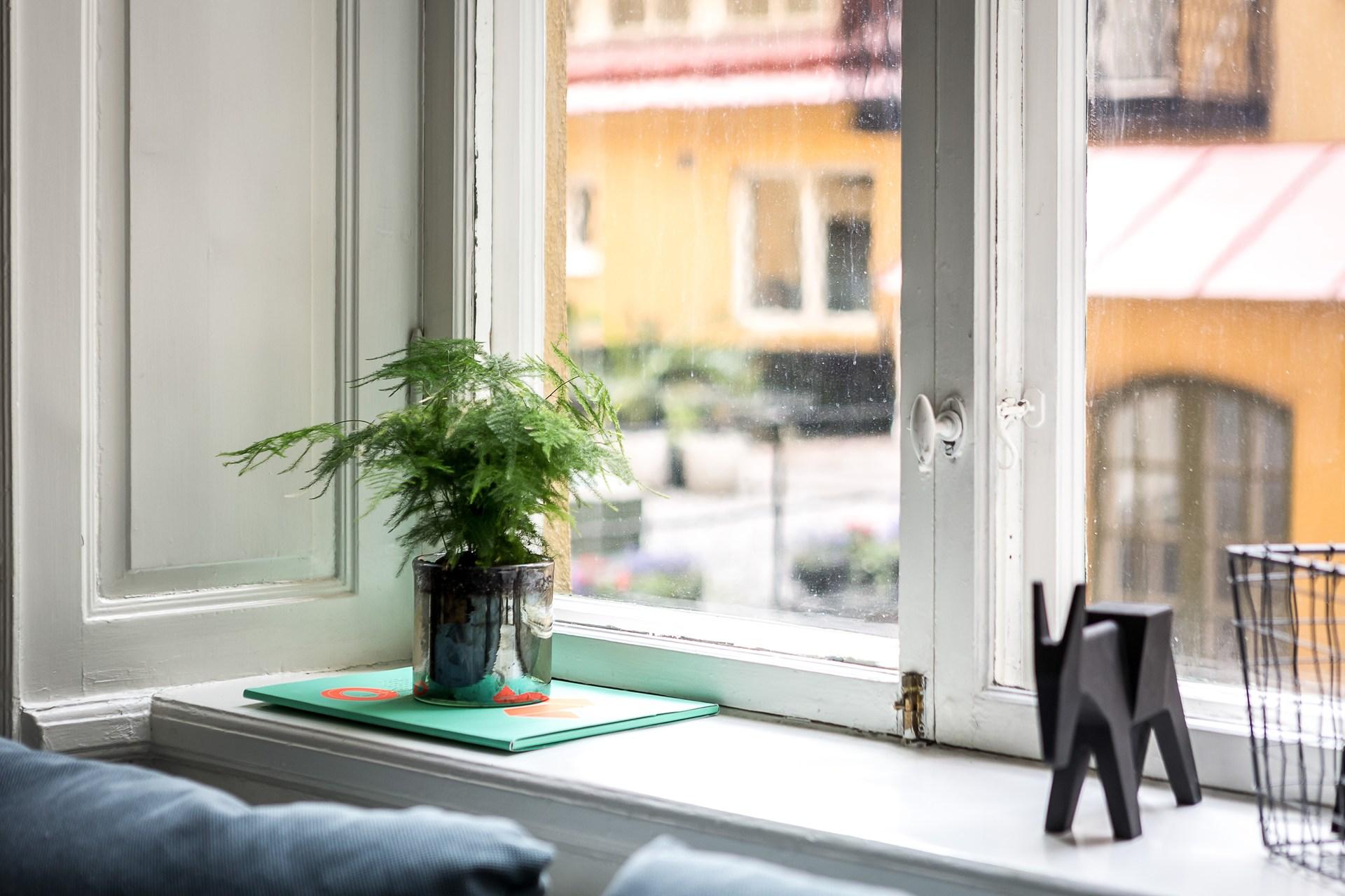 окно подоконник цветок