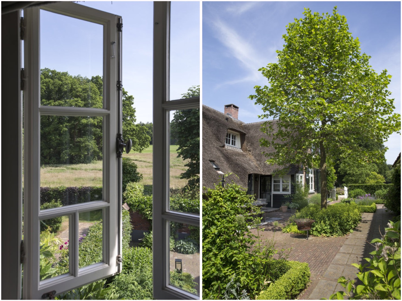 участок загородного дома ландшафт озеленение