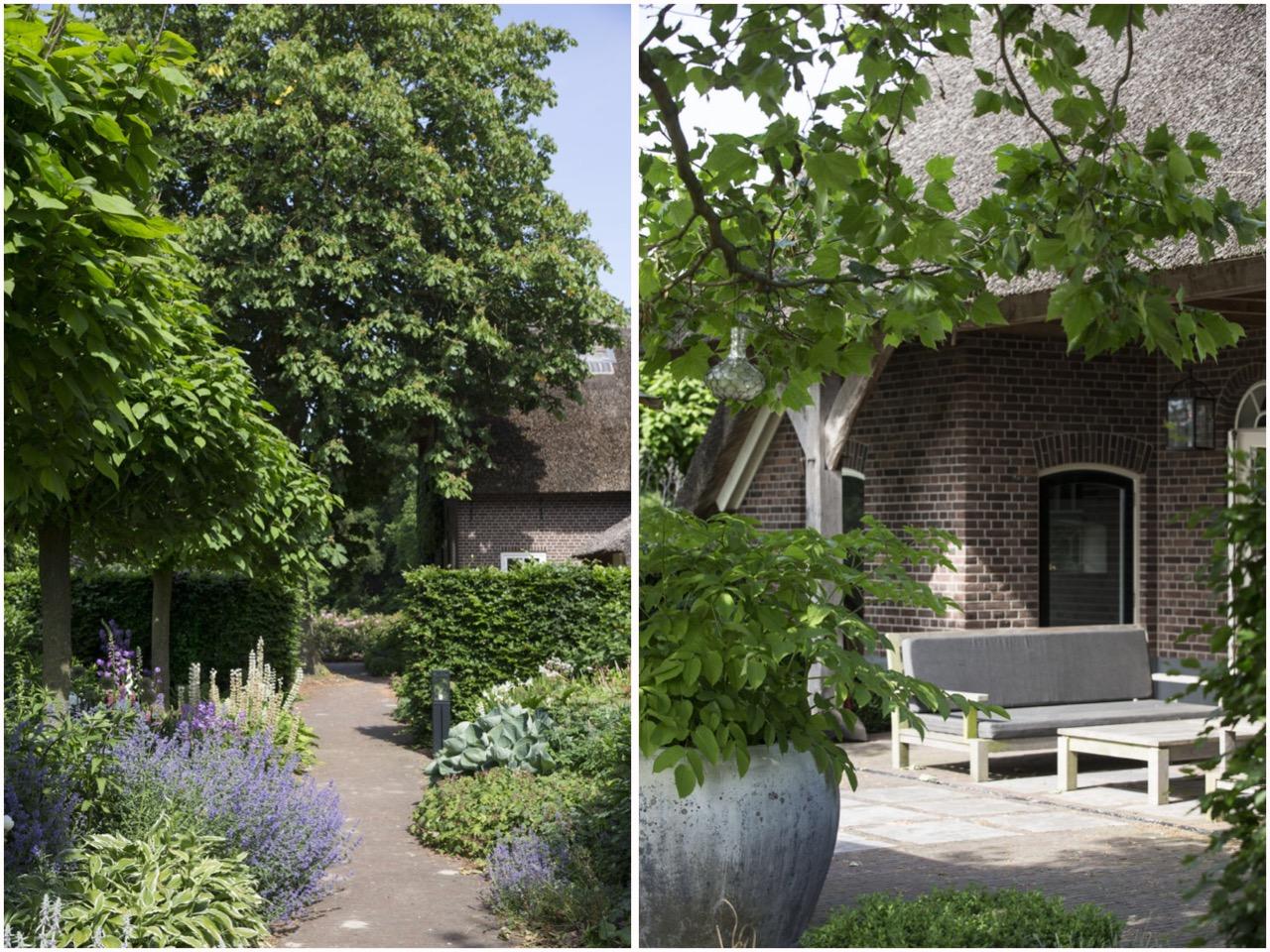 загородный дом ландшафт озеленение дорожки терраса