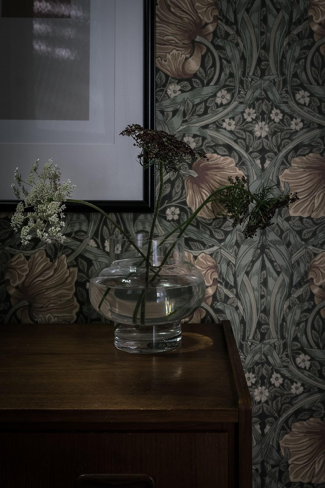 ваза растения