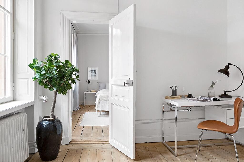 комната дверь комнатное растение кашпо
