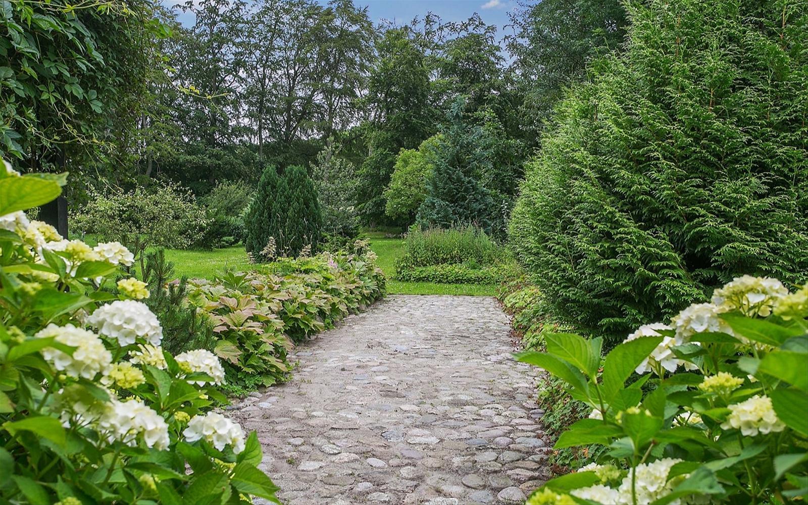 участок садовая дорожка клумбы кустарники деревья