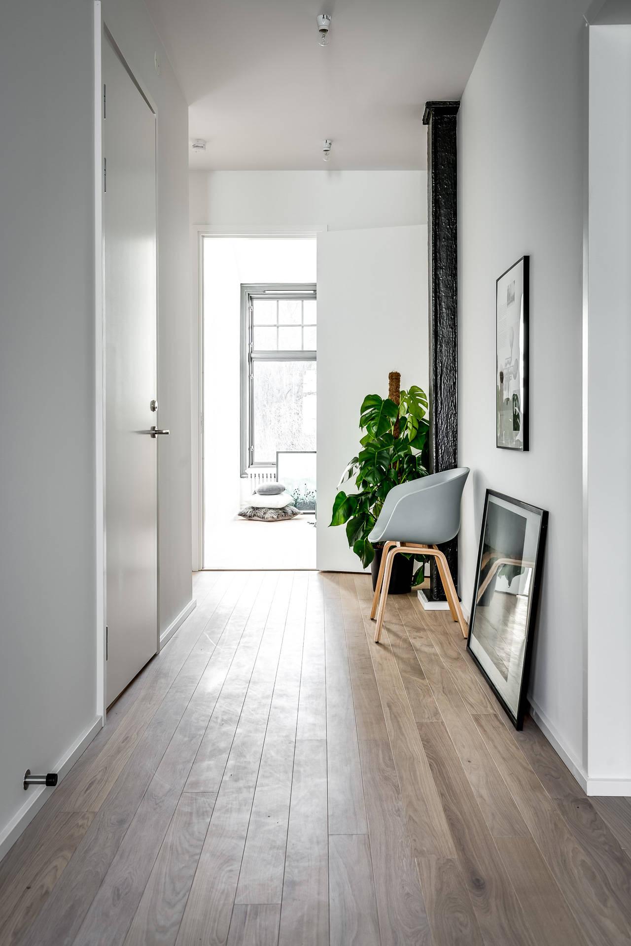 коридор половая доска двери