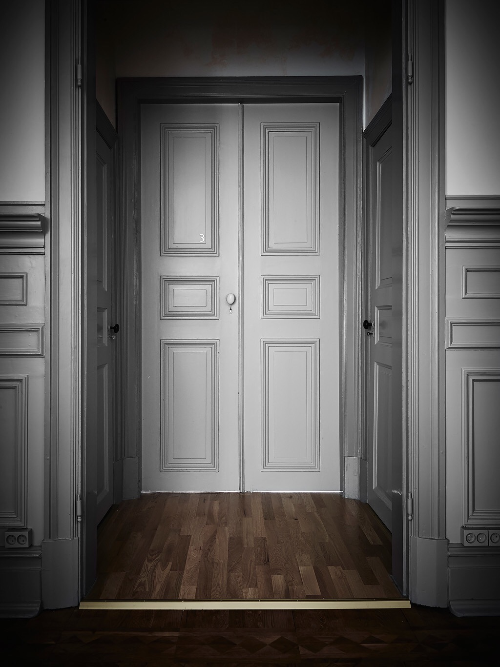 серые двери настенные панели молдинги наличники