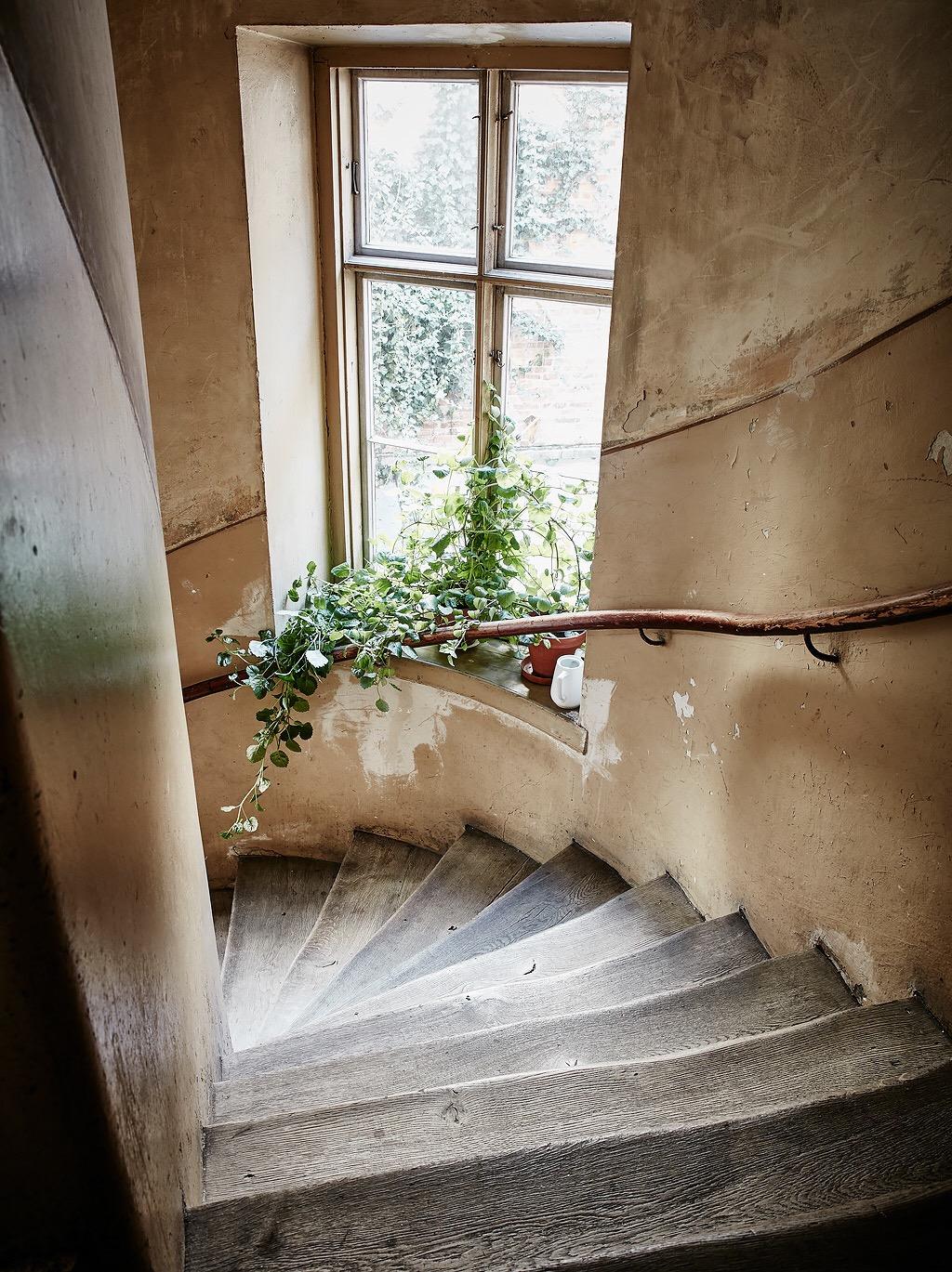 подъезд лестница перила окно подоконник цветок