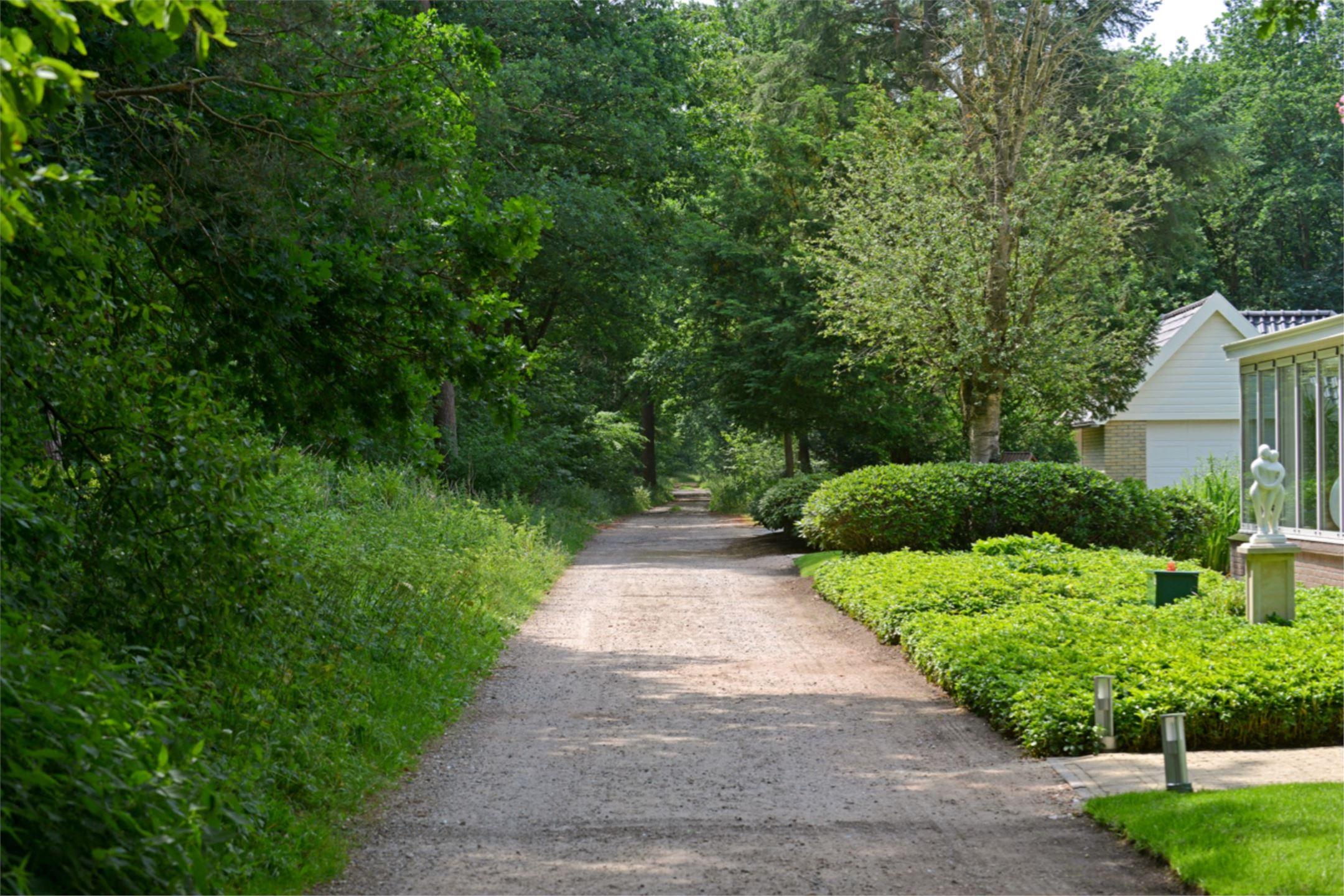 загородный дом дорожки газон клумбы