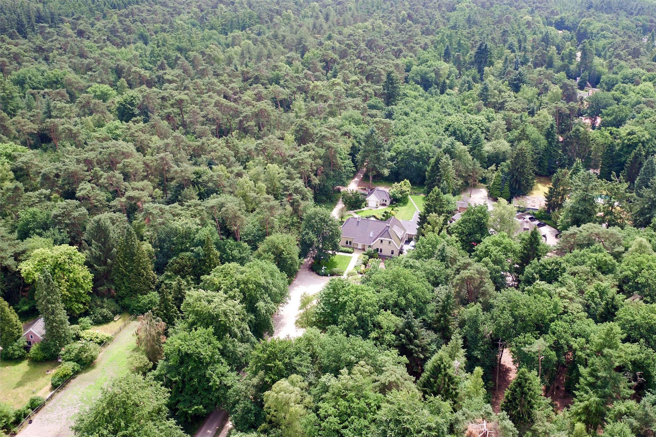 загородный дом лес вид сверху