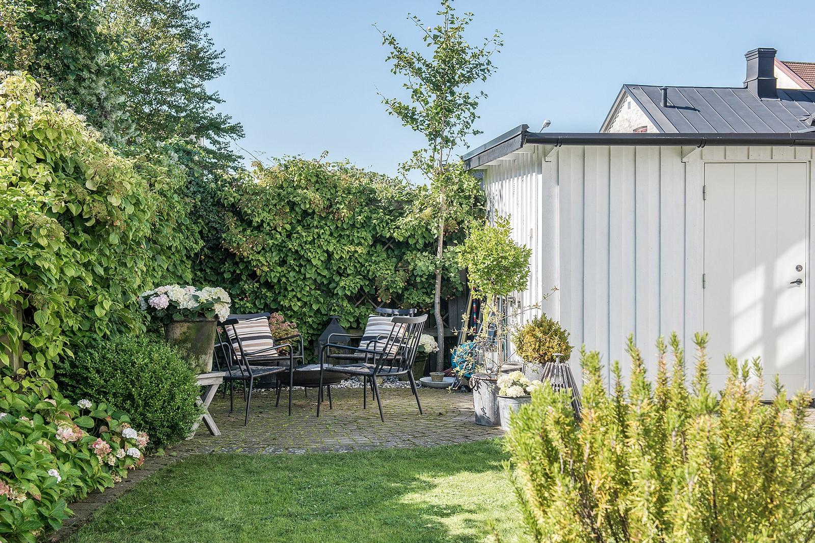 участок загородного дома газон кустарники клумбы садовая мебель отмостка