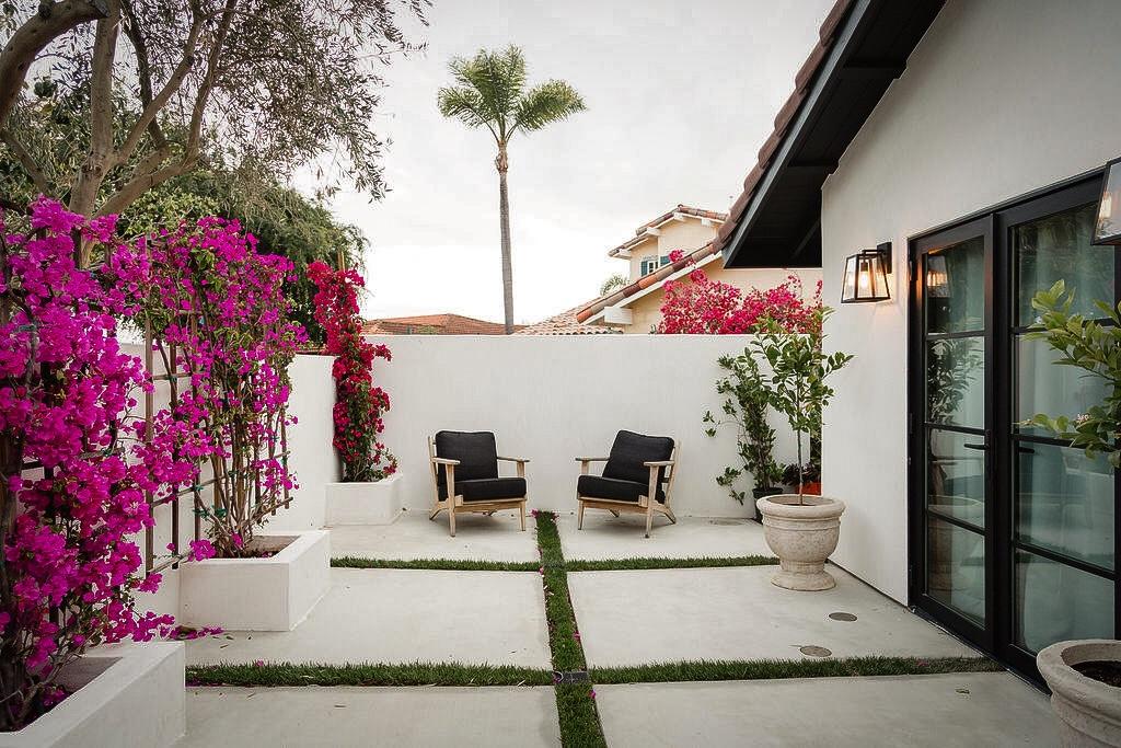 backyard pink bougainvillea
