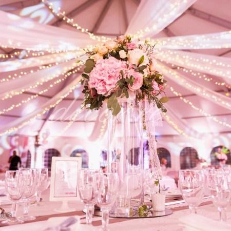 Nos tentures pour plafond et guirlandes lumineuses à l'Espace Oméga