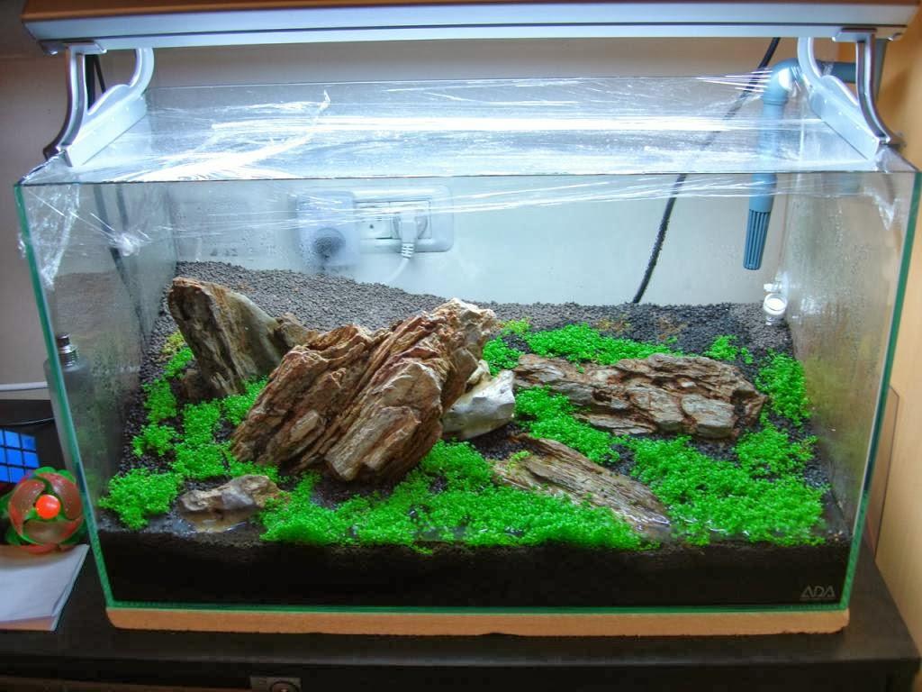 aquarium hardscape materials