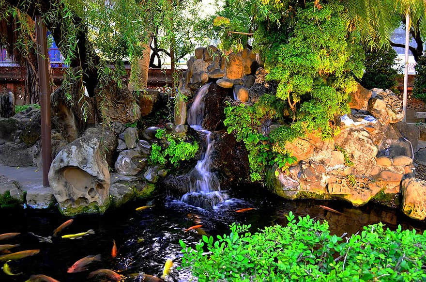 pond koi waterfall nature garden park fresh zen ornamental