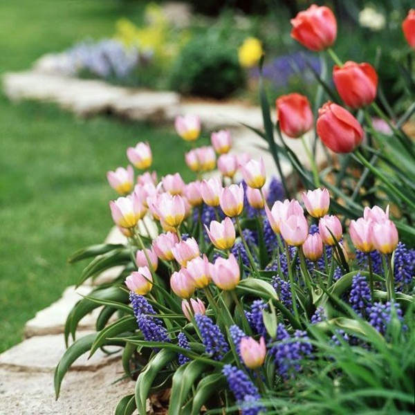 Garden Design Ideas And Gardening Tips For Beginners Decor10 Blog
