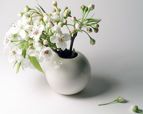 20 Ideas For Spring Home Decorating With Blooming Branches