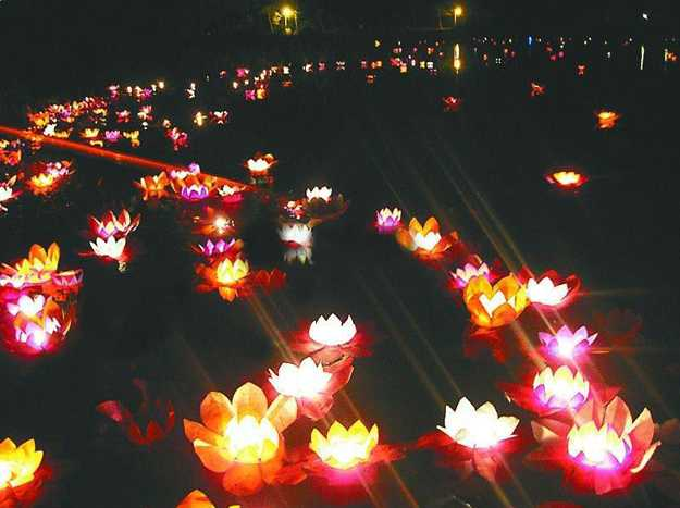 Water Lily Floating Lights Adding Romantic Accents to