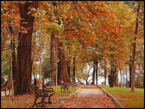 Fall Harvest Desktop Wallpaper 161 Feliz Oto 241 O Y Feliz Primavera Decoracion In