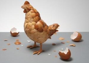 gallina-huevos
