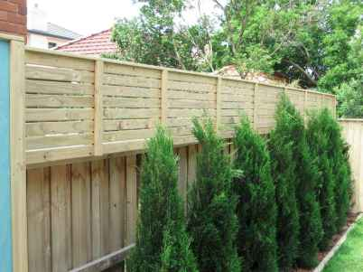 66 Affordable Backyard Privacy Fence Ideas