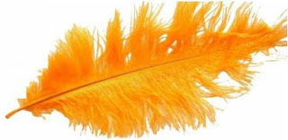 decoracion fiesta carnaval con plumas