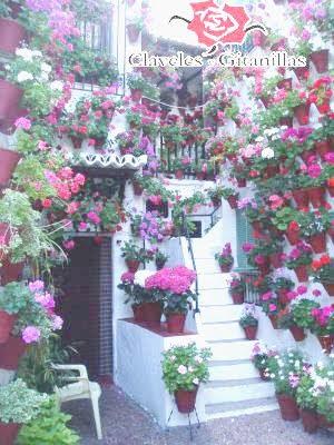 La decoraci n de los patios de c rdoba for Decoracion cordoba