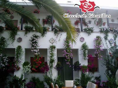 La decoraci n de los patios de c rdoba - Patios decorados con plantas ...
