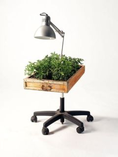 18. Recycled planter