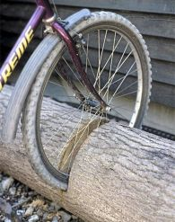 20. Repurpose a fallen tree into a bike stand