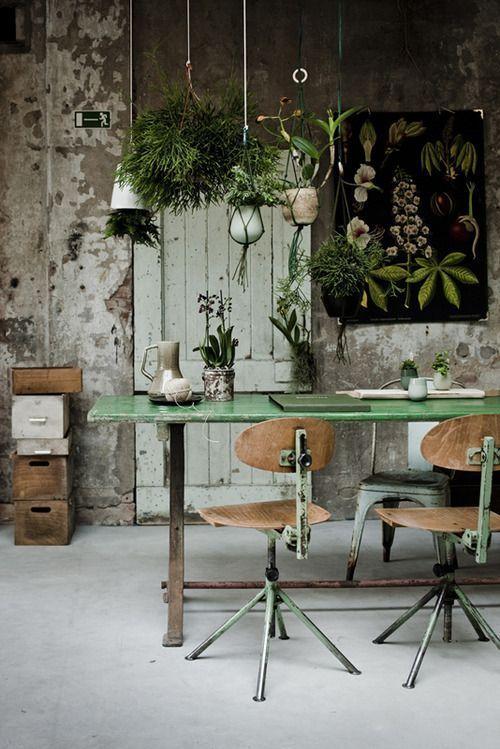 El Feng Shui recomienda plantas en el espacio de trabajo