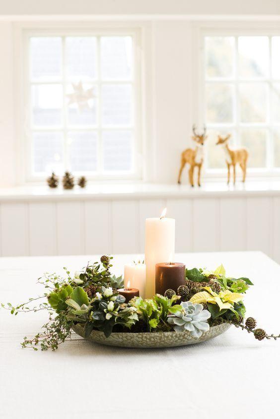 Conoce la lista actualizada de las plantas de Navidad