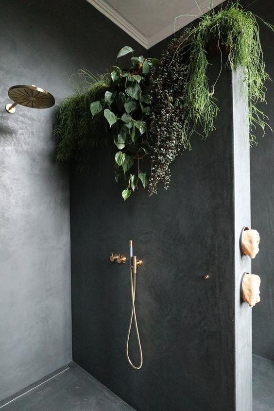 plantas colgantes para dummies sobre el muro de la ducha