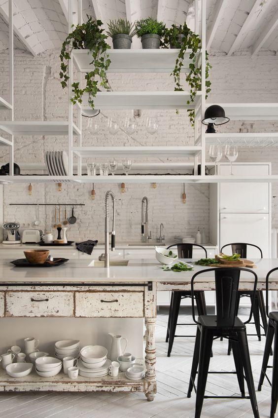 plantas colgantes para dummies en la estanteria de la cocina
