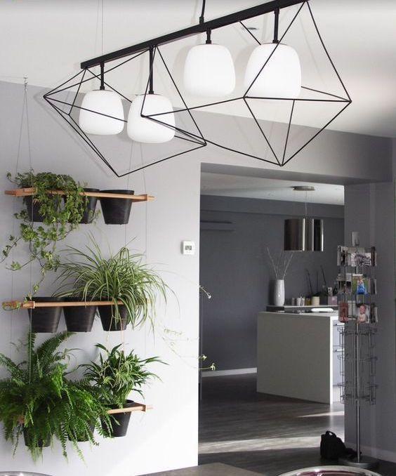 plantas colgantes para dummies en la cocina. Design by Architk.com