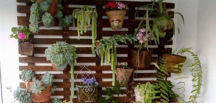 Como fazer um jardim suspenso e vertical passo a passo  Decorando Casas