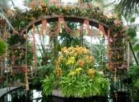 Preview The New York Botanical Garden's Antique Garden