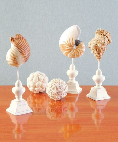 zulily beach decor