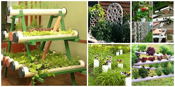 8 DIY PVC Gardening Ideas And Projects