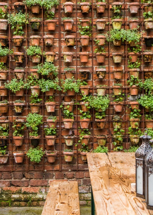 15+ Superb Wall Gardens To Enhance Your Yard