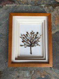 How to Create a Shadow Box?