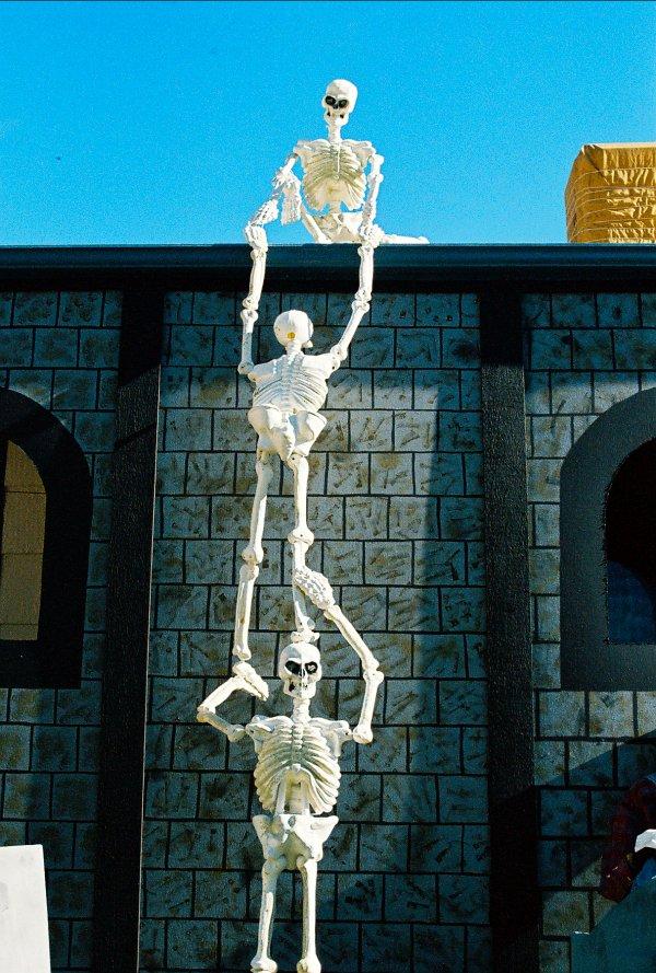 25 Stunning Skeleton Halloween Decorations Ideas  Decoration Love