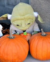 Cute Outdoor Halloween Decorations