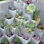 BEST SUCCULENT GARDEN DESIGN IDEAS 139