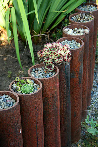 BEST SUCCULENT GARDEN DESIGN IDEAS 59