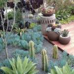 BEST SUCCULENT GARDEN DESIGN IDEAS 68