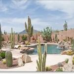 Design For Backyard Landscaping 1
