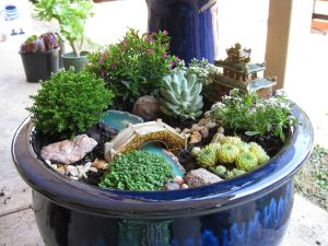 Magical And Best Plants DIY Fairy Garden Inspirations 13