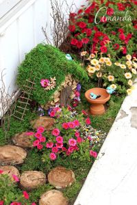 Magical And Best Plants DIY Fairy Garden Inspirations 49