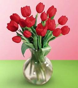 Tulips In Vase 15