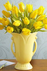 Tulips In Vase 17